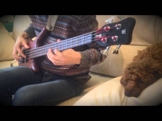 GhostBusters OST Bass Cover