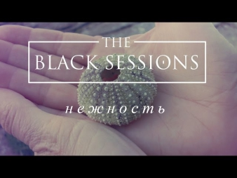 The Black Sessions - Нежность (К/ф Три тополя на Плющихе)